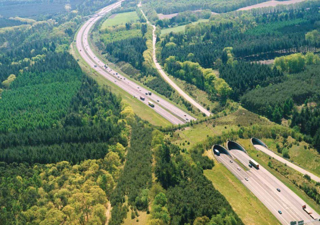 Highway with Ecoduct Utrecht